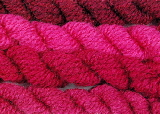 Buy cochineal dye extract here